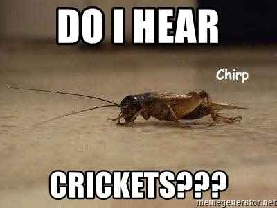 Crickets Chirping